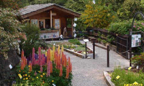 Oasi WWF Giardino Botanico di Oropa (Biella)